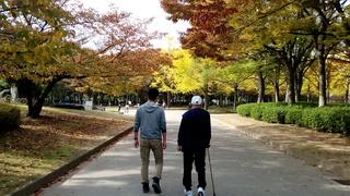 大仙公園4.jpg